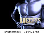 success with a business man... | Shutterstock . vector #314421755
