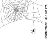 spider and web isolated on... | Shutterstock .eps vector #314435195
