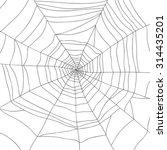 spider and web isolated on... | Shutterstock .eps vector #314435201