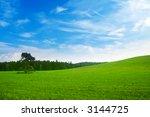 fresh summer landscape   blue... | Shutterstock . vector #3144725