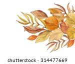 autumn background of hand drawn ... | Shutterstock . vector #314477669