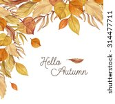 autumn background of hand drawn ... | Shutterstock . vector #314477711