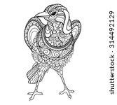 Vector Tribal Decorative Magpi...