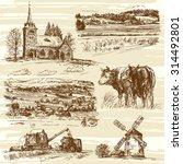 Farm  Cows  Harvest  Rural...