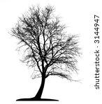 tree  vector  | Shutterstock .eps vector #3144947