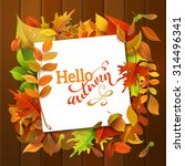 hello autumn background. bright ... | Shutterstock .eps vector #314496341