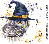 Halloween Owl And Witch Hat....