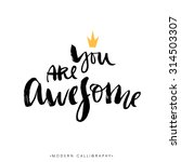 you are awesome. modern brush... | Shutterstock .eps vector #314503307