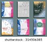 set of flyer  brochure design... | Shutterstock .eps vector #314506385
