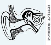 human internal ear diagram.... | Shutterstock .eps vector #314532185