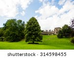 green meadows and trees  blue... | Shutterstock . vector #314598455
