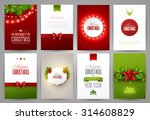 set of christmas brochures... | Shutterstock .eps vector #314608829
