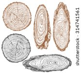round and oval cross section of ... | Shutterstock .eps vector #314741561