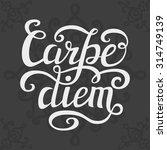 hand lettering typography... | Shutterstock .eps vector #314749139