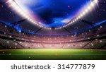 stadium | Shutterstock . vector #314777879
