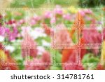 creating frames and smoke on...   Shutterstock . vector #314781761