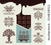 chocolate. products from cocoa... | Shutterstock .eps vector #314818511