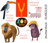 Cute Zoo Alphabet In Vector.y...