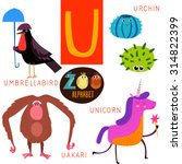 Cute Zoo Alphabet In Vector. U...