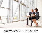 two senior business colleagues... | Shutterstock . vector #314852309