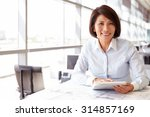 female architect using tablet... | Shutterstock . vector #314857169