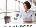 female architect using tablet... | Shutterstock . vector #314857265