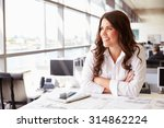 female architect at her desk in ... | Shutterstock . vector #314862224