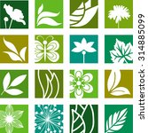 collection of nature elements | Shutterstock .eps vector #314885099