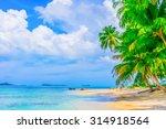 desert island with palm trees ... | Shutterstock . vector #314918564