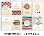 stock vector set of brochures... | Shutterstock .eps vector #314951519