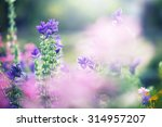 colorful lilac beautiful... | Shutterstock . vector #314957207