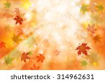 beautiful colorful autumn... | Shutterstock . vector #314962631