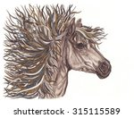 beautiful horse with bright... | Shutterstock . vector #315115589
