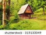 mountain hut deep inside green  ... | Shutterstock . vector #315133049