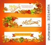 horizontal fall banners set.... | Shutterstock .eps vector #315144554