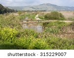 hula valley in northern israel... | Shutterstock . vector #315229007