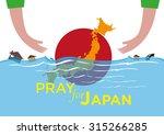 pray for japan concept.... | Shutterstock .eps vector #315266285