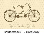 tandem bicycle. retro bike... | Shutterstock .eps vector #315269039