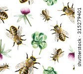 watercolor bee and clover... | Shutterstock . vector #315279401