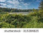lake view | Shutterstock . vector #315284825