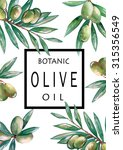 watercolor drawing set of olive ... | Shutterstock . vector #315356549
