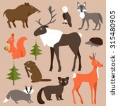 collection of forest animals on ... | Shutterstock .eps vector #315480905