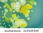 Different Colored Bacterial...