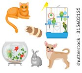 Set Of Pets And Other Animal...
