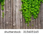 yellow plank background with... | Shutterstock . vector #315605165