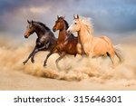 Stock photo group of horse run gallop in sand 315646301