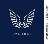 template for logos  labels and... | Shutterstock .eps vector #315648254