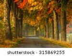 Autumn Road Alley Northern...