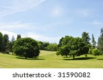 view of many trees in a park... | Shutterstock . vector #31590082
