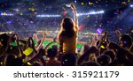 fans on stadium game panorama... | Shutterstock . vector #315921179